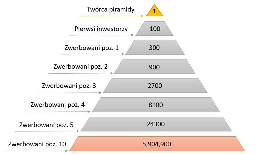 schemat funkcjonowania piramidy finansowej